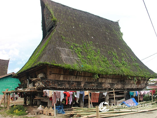 A House Indonesia