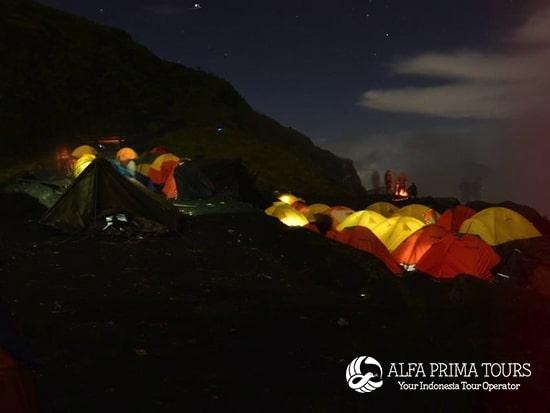 Alfa Prima Tours a2